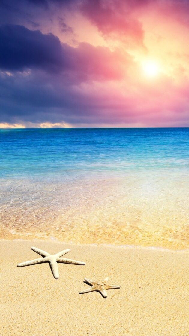 Beach iPhone Wallpaper resolution 630x1118