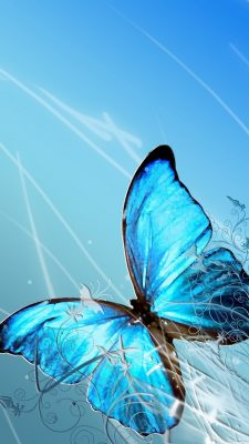 Blue Butterfly Wallpaper iPhone with HD Resolution 1080X1920