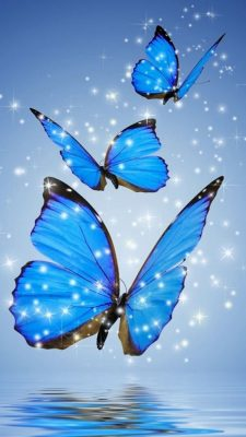 Wallpaper iPhone Blue Butterfly with HD Resolution 1080X1920
