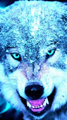 Cool Wolf Wallpaper iPhone With high-resolution 1080X1920 pixel. You can use this wallpaper for your iPhone 5, 6, 7, 8, X, XS, XR backgrounds, Mobile Screensaver, or iPad Lock Screen